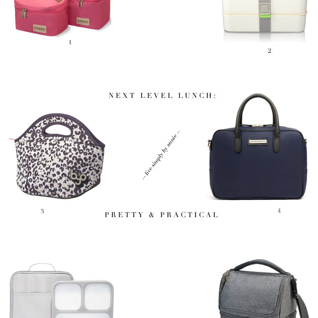 pretty-practical-lunch-boxes
